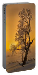 Portable Battery Charger featuring the photograph Frosted Tree by Tom Gresham