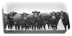 Frosty Faces Black Angus Cows Montana Portable Battery Charger