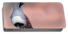 Gambels Quail Three Portable Battery Charger