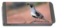 Gambels Quail Two Portable Battery Charger