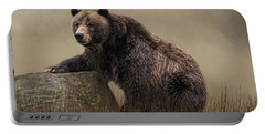 Gentle Ben Portable Battery Charger