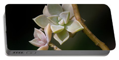 Portable Battery Charger featuring the photograph Ghost Plant by Dale Kincaid