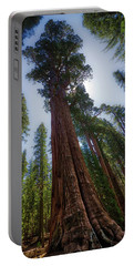 Giant Sequoia Tree Portable Battery Charger