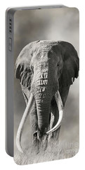 Giant Tusked Bull Elephant In Amboseli, Kenya Portable Battery Charger