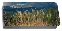 Portable Battery Charger featuring the photograph Gold Grass Snowy Peak by Tom Gresham