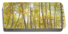 Portable Battery Charger featuring the photograph Golden Sunshine On An Autumn Day by James BO Insogna