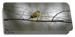 Goldfinch In Winter Looking At You Portable Battery Charger