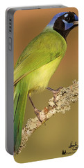 Gorgeous Green Jay Portable Battery Charger