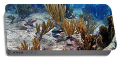 Gorgonian Parrotfish Portable Battery Charger