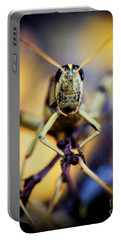 Portable Battery Charger featuring the photograph Grasshopper by Jon Burch Photography