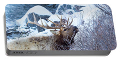 Grazing Elk Portable Battery Charger