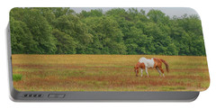 Grazing Paint Horse Portable Battery Charger