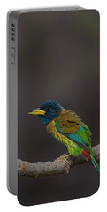 Great Barbet Portable Battery Charger