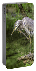 Portable Battery Charger featuring the photograph Great Blue Heron Itch by Donald Brown