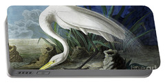 Great Egret, Casmerodius Albus Portable Battery Charger