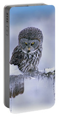 Great Gray Owl In Winter, North America Portable Battery Charger