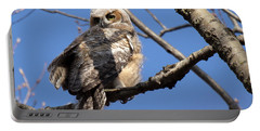 Great Horned Owlet 42915 Portable Battery Charger