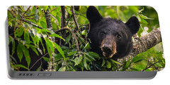 Great Smoky Mountains Bear - Black Bear Portable Battery Charger