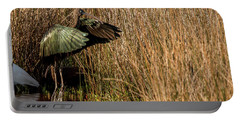 Green Ibis Portable Battery Charger