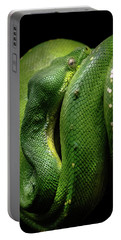 Green Tree Boa Portable Battery Charger