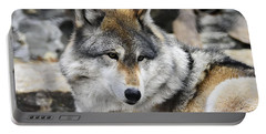 Grey Wolf Portable Battery Charger
