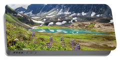 Grizzly Bear Lake Portable Battery Charger