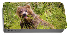 Grizzly Cub Grazing, Alaska Portable Battery Charger