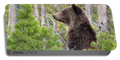 Grizzly Profile Portable Battery Charger