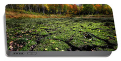 Portable Battery Charger featuring the photograph Groovy Grass In The Fall by Michael Ash