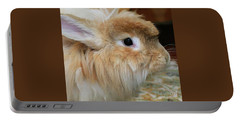 Portable Battery Charger featuring the photograph Hairy Rabbit by Debbie Stahre