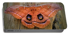 Halloween Moth Portable Battery Charger