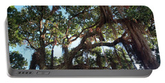 Portable Battery Charger featuring the photograph Hanging Vine Tree by Mark Dodd