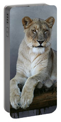 Portable Battery Charger featuring the photograph Happy Lioness by Debi Dalio