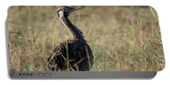 Black-bellied Bustard Portable Battery Charger