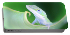 Hello, Anole. 2 Portable Battery Charger