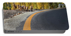 Highway Story Portable Battery Charger