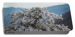 Hoarfrost In The Blue Ridge Mountains Portable Battery Charger