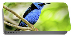 Red Legged Honeycreeper Portable Battery Charger