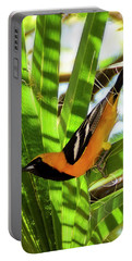 Hooded Oriole V1912 Portable Battery Charger