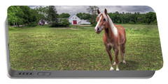 Horse In Pasture Portable Battery Charger