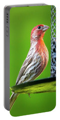 Portable Battery Charger featuring the photograph House Finch At The Feeder by Philip Rispin