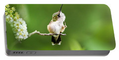 Hummingbird Flexibility Portable Battery Charger