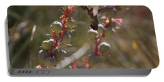 Hummingbird Flying To Red Yucca 3 In 3 Portable Battery Charger