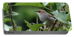 Hunter's Cisticola Portable Battery Charger