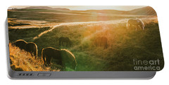 Icelandic Landscapes, Sunset In A Meadow With Horses Grazing  Ba Portable Battery Charger