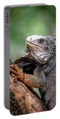 Iguana's Portrait Portable Battery Charger