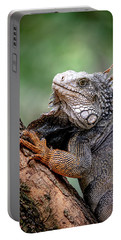 Portable Battery Charger featuring the photograph Iguana's Portrait by Francisco Gomez