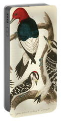 1. Red-headed Woodpecker. 2. Yellow-bellied Woodpecker. 3. Hairy Woodpecker. 4. Downy Woodpecker. Portable Battery Charger