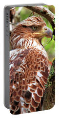 Immature Eagle Portable Battery Charger