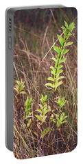 In Tall Grass Portable Battery Charger